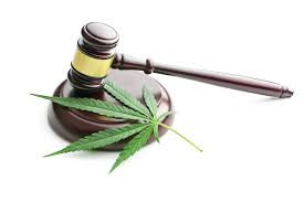 Monty Twp to Opt Out of Cannabis Business, for Now
