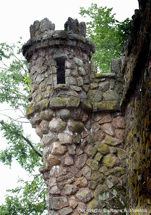 Duke Water Works Castle