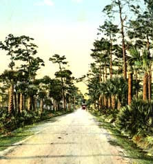 Public Road to Lewis Point