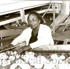 Hastings - Woman sorting potatoes.