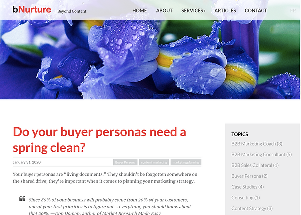 blog coywriting about buyer personas
