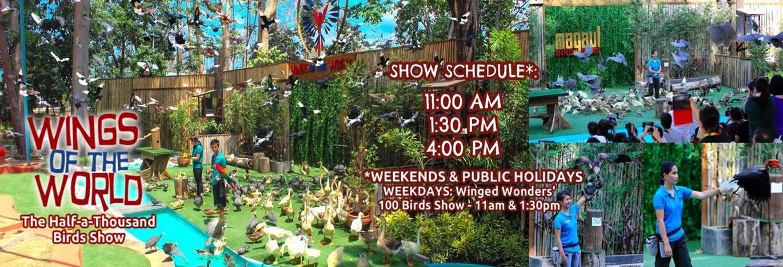 show schedule final.jpg