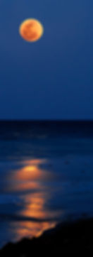 A full moon over the Atlantic ocean in Florida