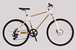 Spedagi Bamboo Bike Sepeda Bambu Dual Track Dwiguna Temanggung Produk Lokal Indonesia
