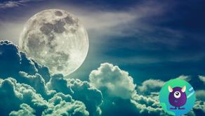 Un homme d'affaire japonais vous invite avec lui sur la lune