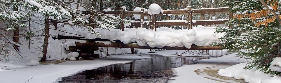 Winter Michigan.jpg