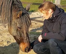 De Eenhoorn Dierenhomeopathie Zeeland in Kapelle consulten in Zuid-West Nederland door Annet Hannewijk