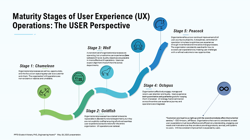 Maturity Stages of UX Ops The USER Persp