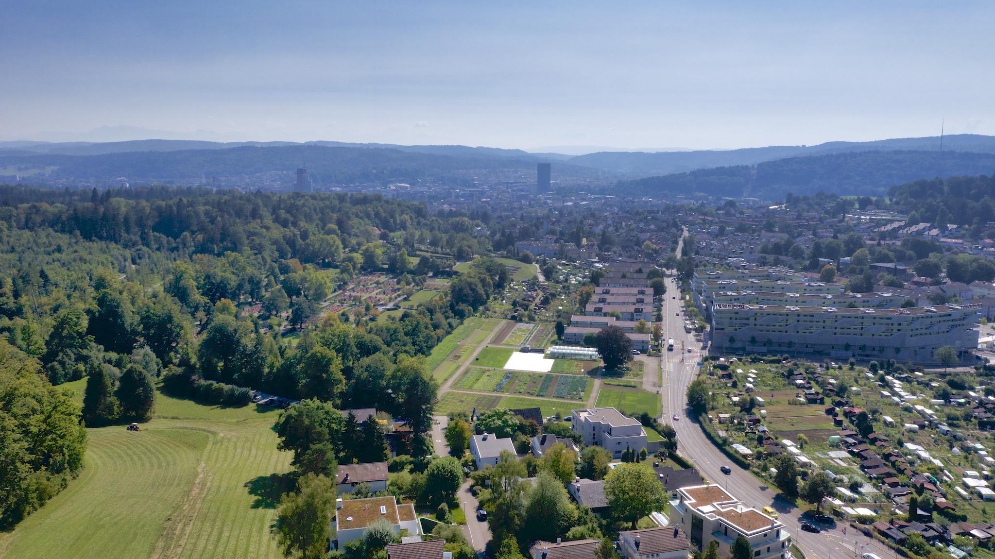 Blick über das Quartier Richtung Stadt