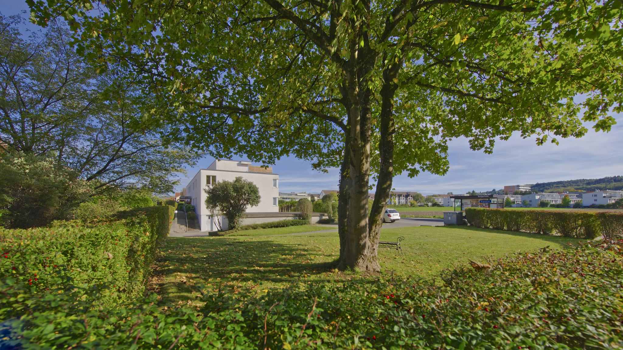 Blick über die Spielwiese (gehört zum Haus) auf das Mehrfamilienhaus