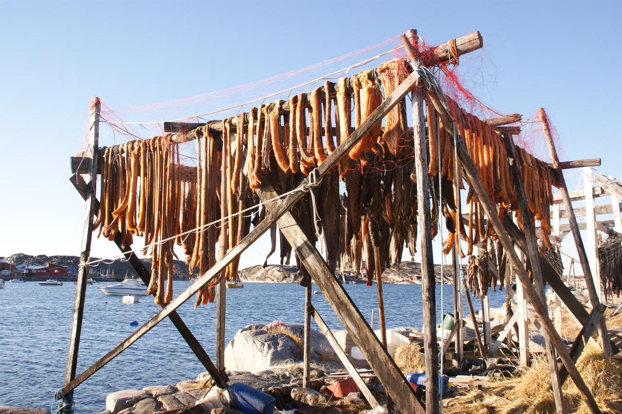 Fleischtrocknerei am Hafen