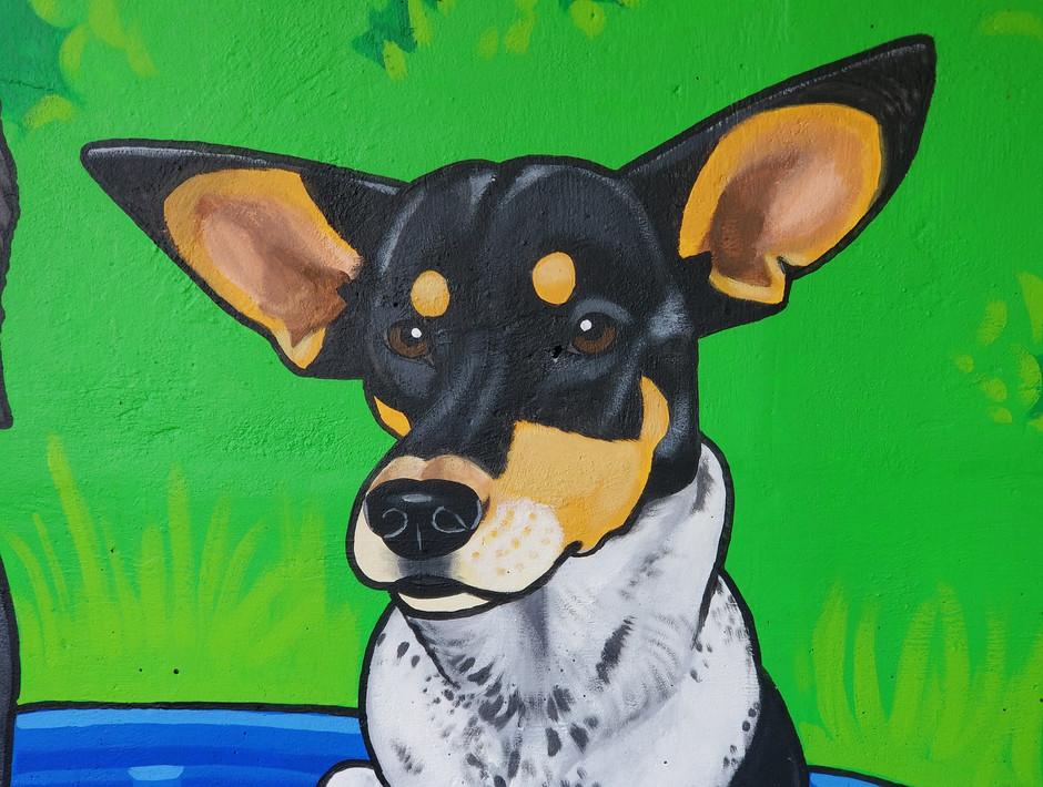 detail hounddog.jpg