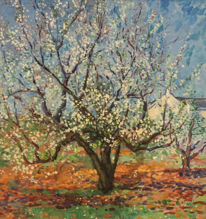 'Blossom Still Life'