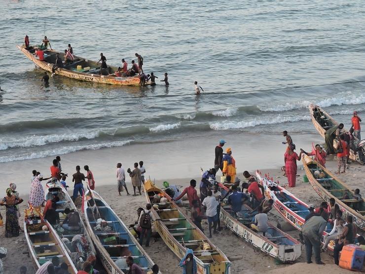 Bakau Fishing Market - B&C Educational Trip