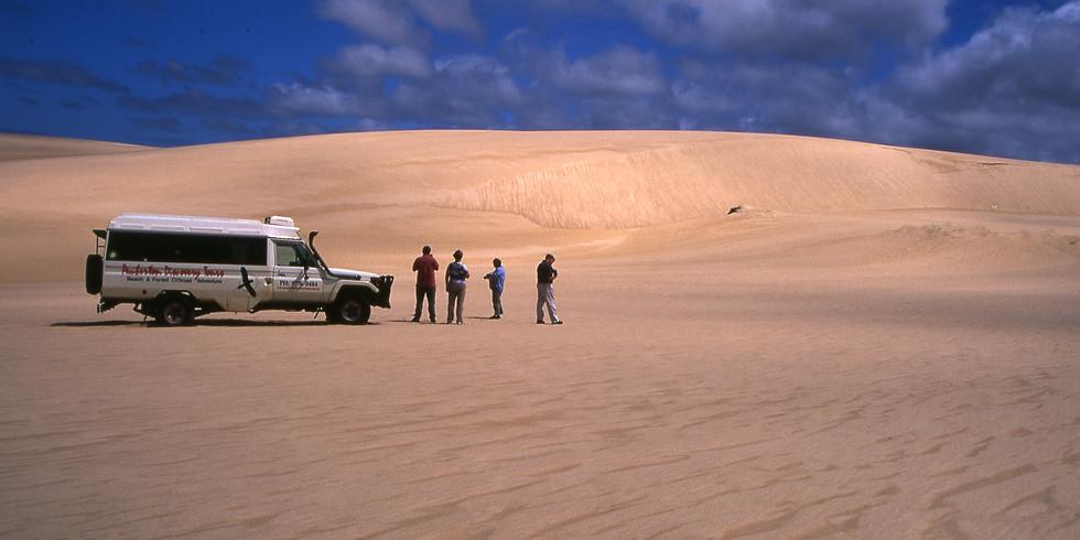 Pemberton Discovery Tours - Yeagarup Dune Safari