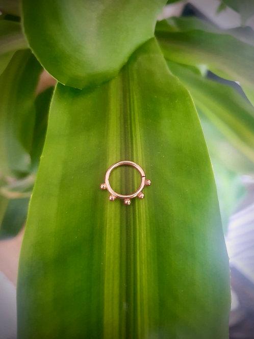 Echo septum ring