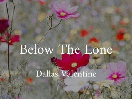 Exclusive Excerpt - Below the Lone - Dallas POV
