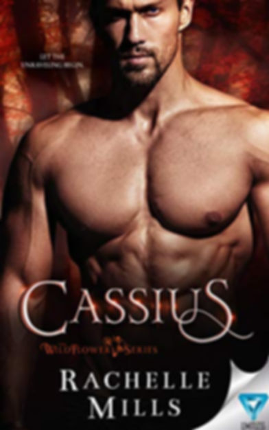 Cassius for review image.jpg