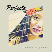 PERFECTA COVER