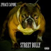 STREET BULLY
