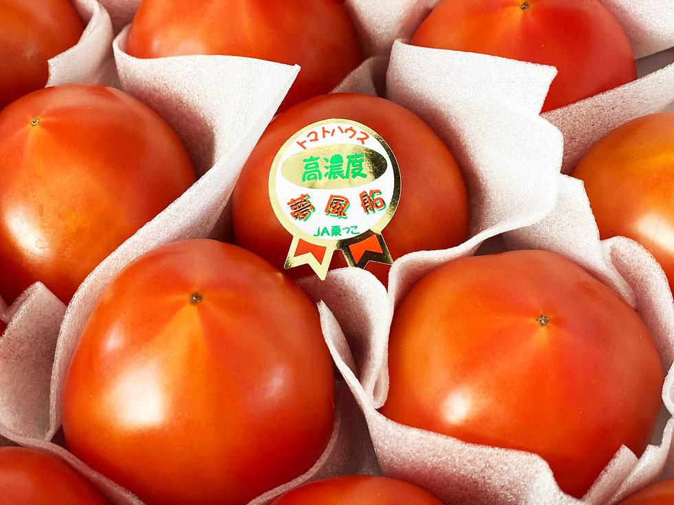 メイントマト写真.jpg