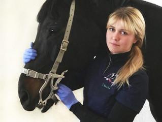 Вебинар: Современная стоматология лошадей