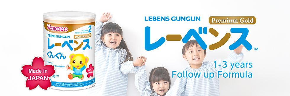 lebensgungun_cover.jpg