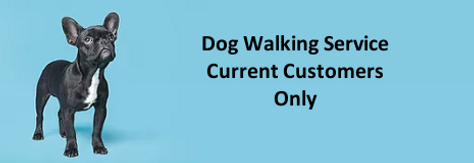 Dog Walk Service Whitestown.png