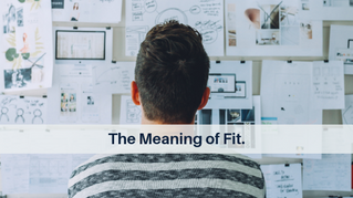 The Meaning of Fit