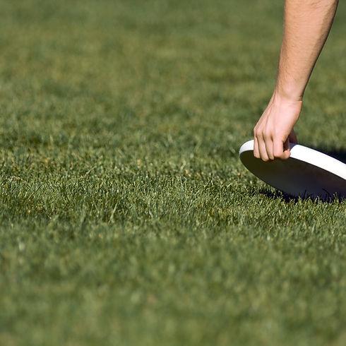 Picking Up Frisbee