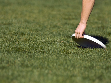 Sporting Event: The US Overall Frisbee Championships