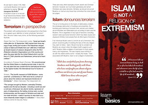 no extremism.JPG