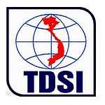 logo TDSI 2.png