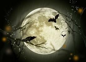 halloween-72939_1280.jpg
