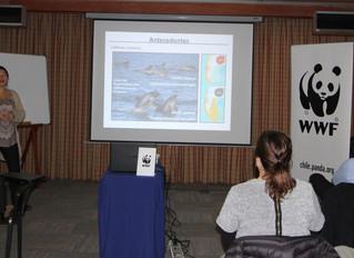 Participación en taller de Técnicas de Monitoreo Ambiental de WWF Chile