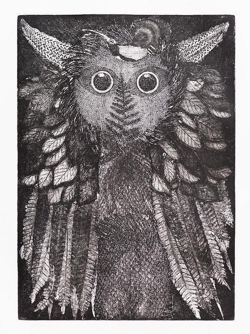 'Night Owl' Etching