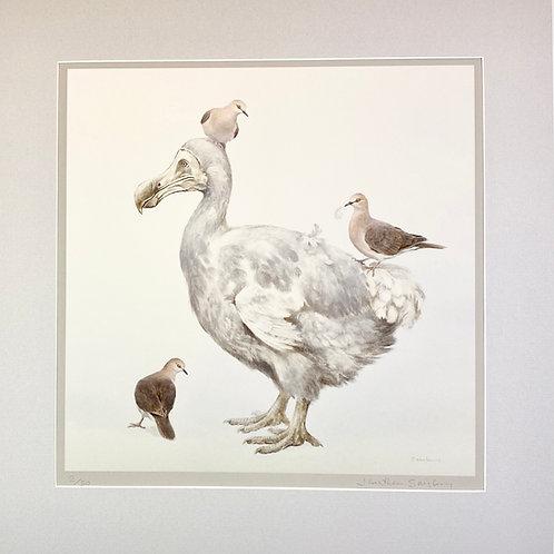 Dodo and Grenada Doves Print
