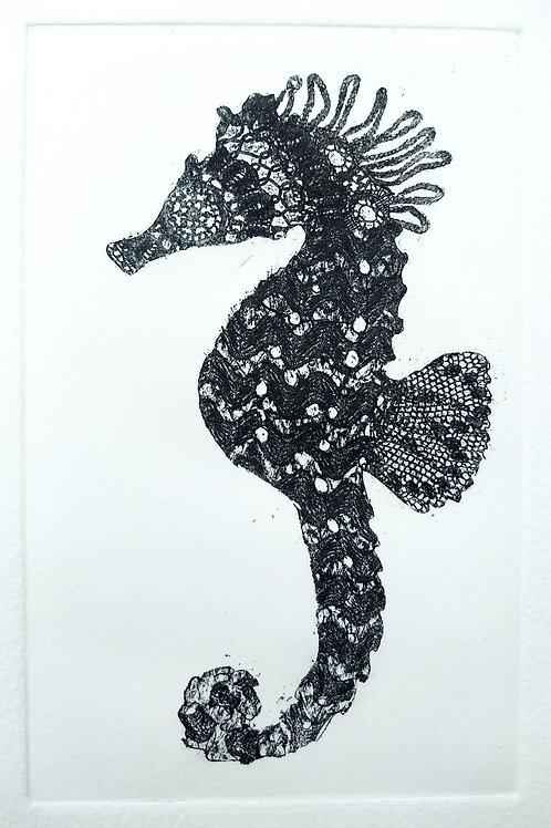 Seahorse Etching
