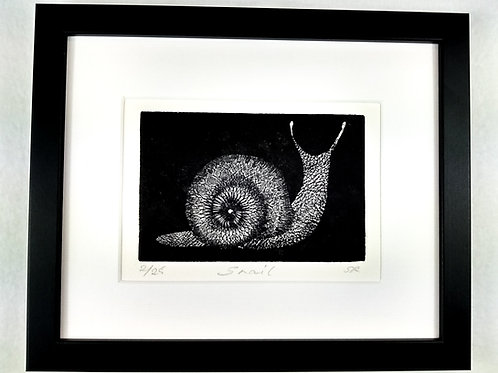 Snail Etching