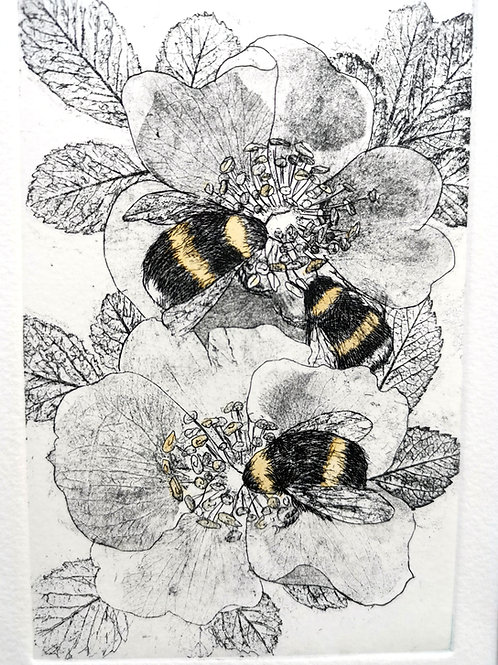 Bees Etching