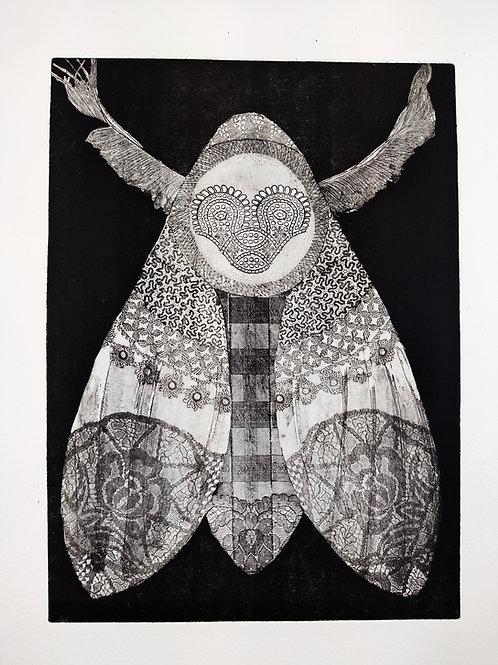 'Deaths Head Moth Dark' Etching
