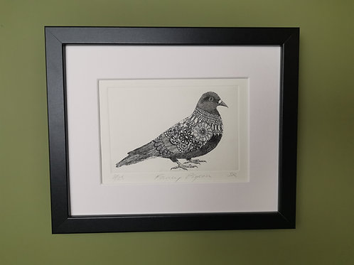 Fancy Pigeon Etching