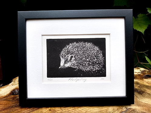 Hedgehog Etching