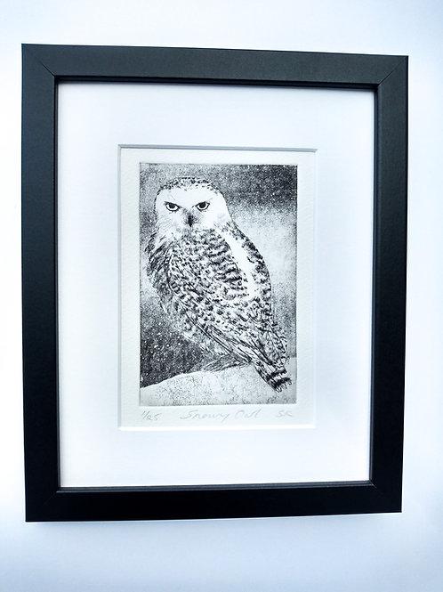 Snowy Owl framed etching