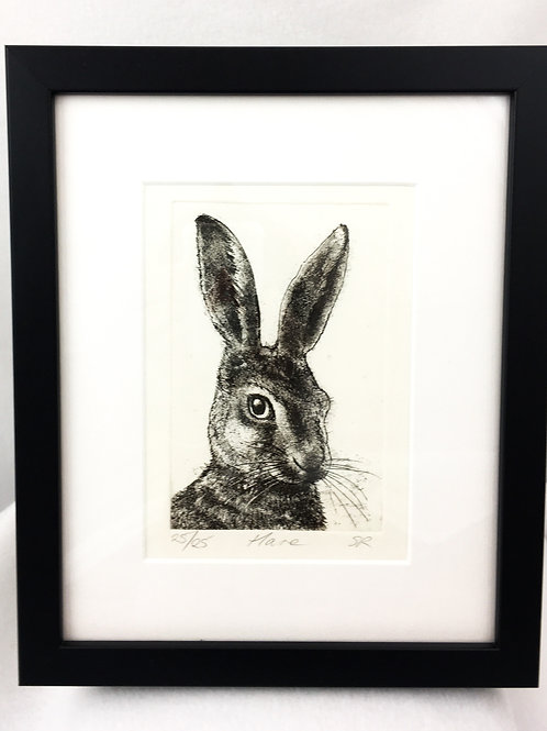Cheeky Hare Etching