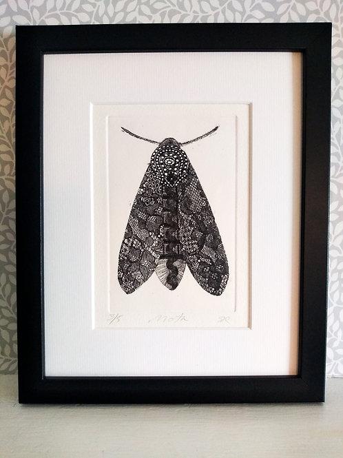 White Moth Etching