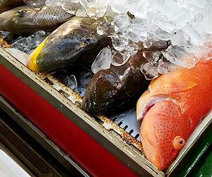 とくやま鮮魚.jpg