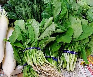 山城野菜.jpg