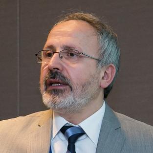 Prof I. Dincer (Canada)
