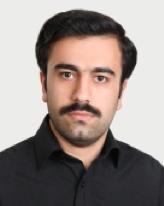 Prof. M. Sheikholeslami (Iran)